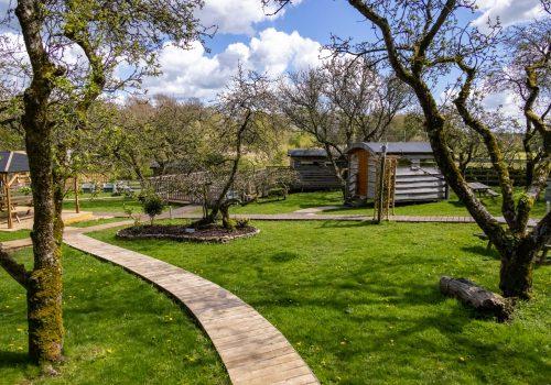 7 - Allington Pippin view